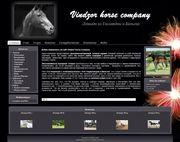 Продажа лошадей из Голландии.
