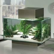 Nano-аквариум Fluval Edge,  23 л.