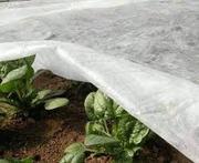 Агроволокно,  спанбонд,  укрывной материал 23г/м2 рулоны