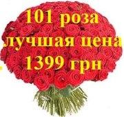 ШОК! Акция!!! Доставка цветов Харьков Букет из 101 розы всего 1399 грн