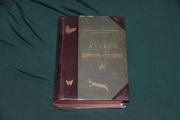 Атлас бабочек. Ламперт. 1913 г.