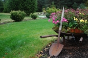 Профессиональный уход за садом