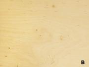 Продам фанеру ФК мебельную 18 мм высокого качества со склада в Харьков