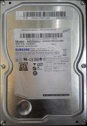 Жесткий диск Samsung HD250HJ
