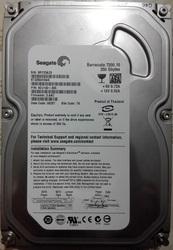Жесткий диск Seagate ST3250410AS