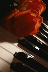 Купить или продать пианино,  рояль - Харьков